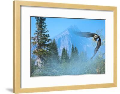 Silent Approach-Gordon Semmens-Framed Giclee Print