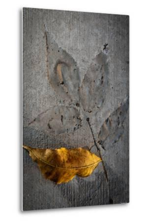 Cement Autumn 1295-Gordon Semmens-Metal Print