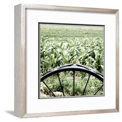 Vegetable Garden-Harold Silverman-Framed Giclee Print