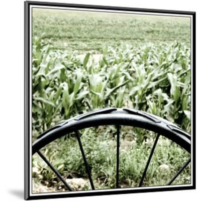 Vegetable Garden-Harold Silverman-Mounted Giclee Print