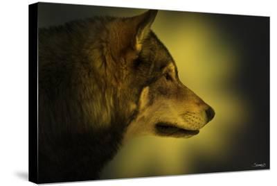 Wolf Profile HL1-Gordon Semmens-Stretched Canvas Print