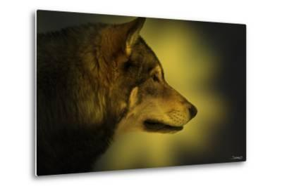 Wolf Profile HL1-Gordon Semmens-Metal Print
