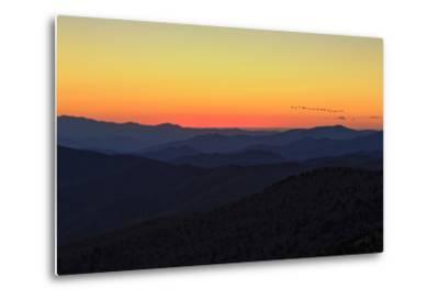Sunset-Galloimages Online-Metal Print