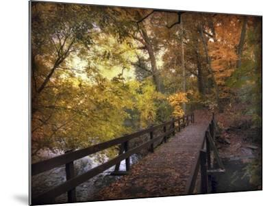 Autumn Crossing-Jessica Jenney-Mounted Giclee Print