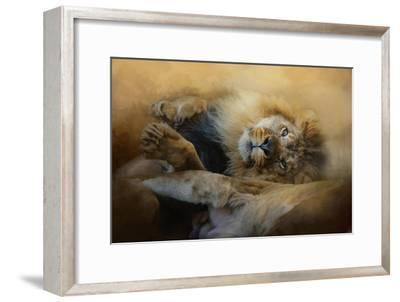 Lion Love 2-Jai Johnson-Framed Giclee Print