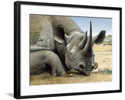 Black Rhino-Harro Maass-Framed Giclee Print
