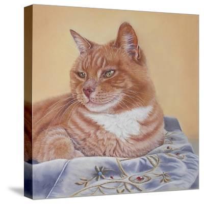 Jack Silk Blanket-Janet Pidoux-Stretched Canvas Print