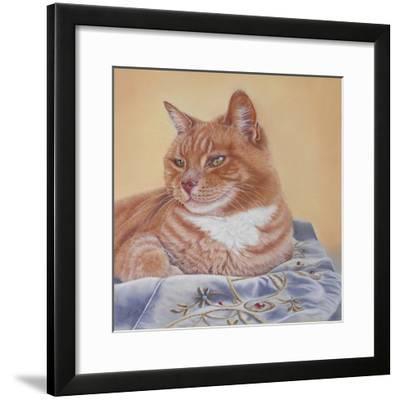 Jack Silk Blanket-Janet Pidoux-Framed Giclee Print