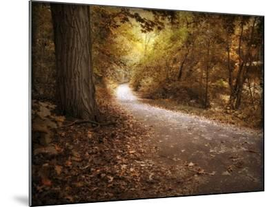 Enlightened Path-Jessica Jenney-Mounted Giclee Print