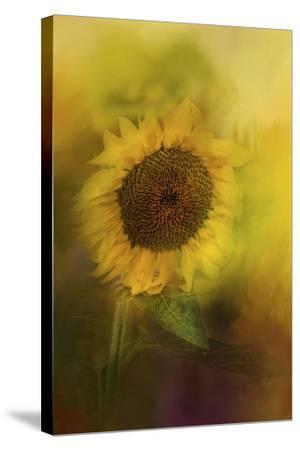 The Happiest Flower-Jai Johnson-Stretched Canvas Print