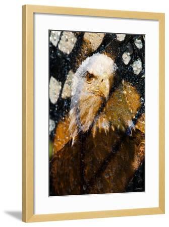 American Bald Eagle I-Gordon Semmens-Framed Giclee Print