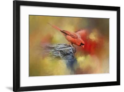 Dive In-Jai Johnson-Framed Giclee Print