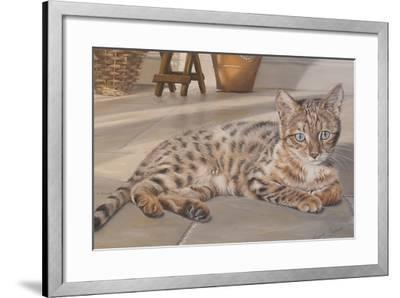 Bengal Kitten-Janet Pidoux-Framed Giclee Print