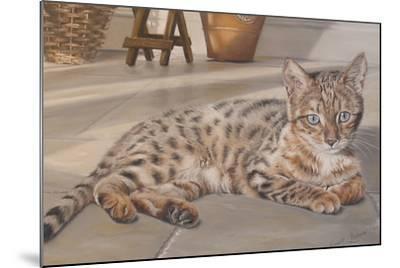 Bengal Kitten-Janet Pidoux-Mounted Giclee Print