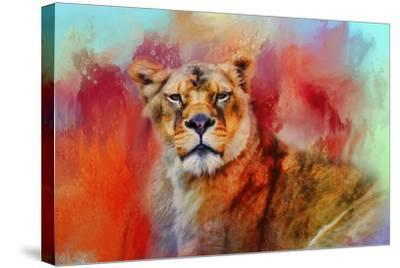 Colorful Expressions Lioness-Jai Johnson-Stretched Canvas Print