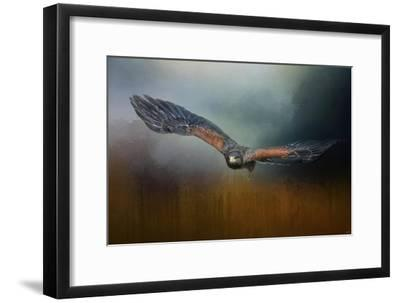 Flight of the Harris Hawk-Jai Johnson-Framed Giclee Print