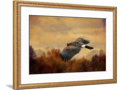 Harris Hawk in Autumn-Jai Johnson-Framed Giclee Print