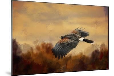Harris Hawk in Autumn-Jai Johnson-Mounted Giclee Print