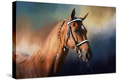 Bathed in the Evening Light-Jai Johnson-Stretched Canvas Print