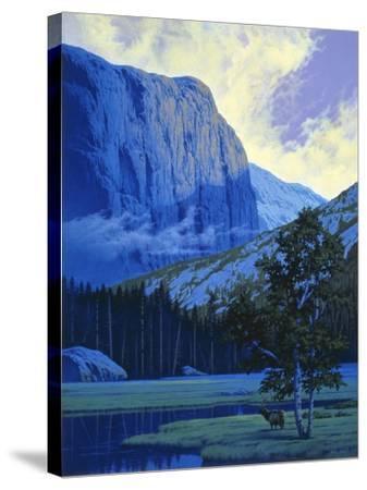 Elk-Joh Naito-Stretched Canvas Print