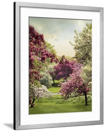 Cherry Tree Grove-Jessica Jenney-Framed Giclee Print