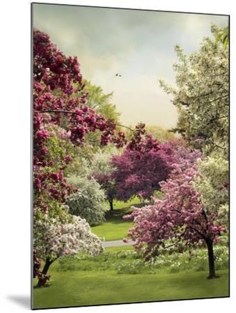 Cherry Tree Grove-Jessica Jenney-Mounted Giclee Print