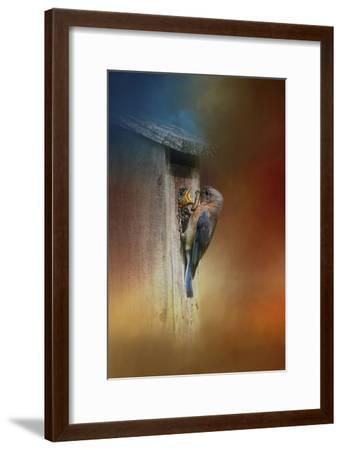 Baby Bluebird Breakfast-Jai Johnson-Framed Giclee Print