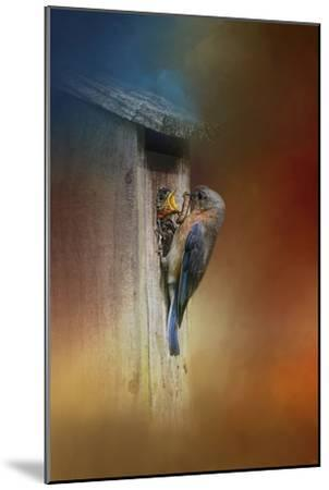 Baby Bluebird Breakfast-Jai Johnson-Mounted Giclee Print
