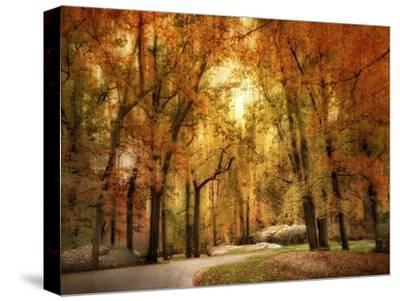 Autumn Impressions-Jessica Jenney-Stretched Canvas Print