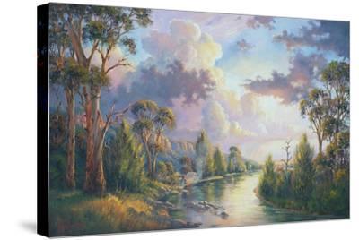 After the Rain - Kangaroo Valley-John Bradley-Stretched Canvas Print