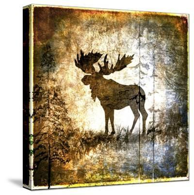 High Country Moose-LightBoxJournal-Stretched Canvas Print