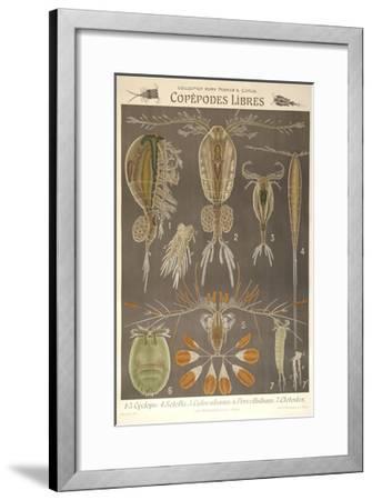 Libres-Marcus Jules-Framed Giclee Print