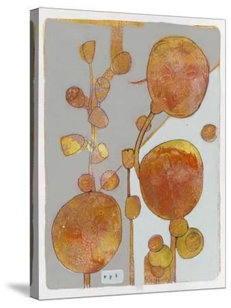 Orange Seed Pods 3-Maria Pietri Lalor-Stretched Canvas Print