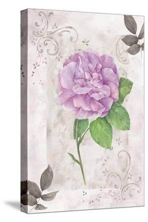 Rose 2-Maria Trad-Stretched Canvas Print
