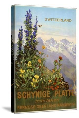 Switzerland View-Marcus Jules-Stretched Canvas Print