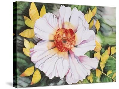 New Poppy-Mary Russel-Stretched Canvas Print