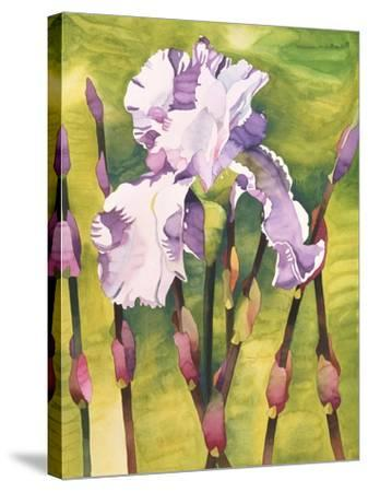 Forest Iris-Mary Russel-Stretched Canvas Print
