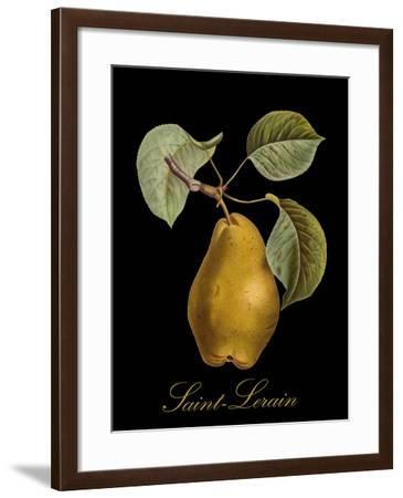 St. Lerain Pear-Mindy Sommers-Framed Giclee Print