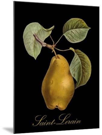 St. Lerain Pear-Mindy Sommers-Mounted Giclee Print