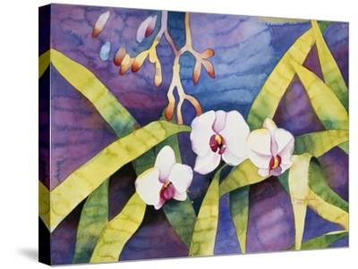 Water Orchids-Mary Russel-Stretched Canvas Print