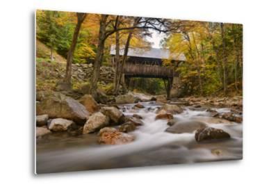 The Flume Bridge-Michael Blanchette-Metal Print