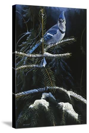 Royal Dress-Michael Budden-Stretched Canvas Print