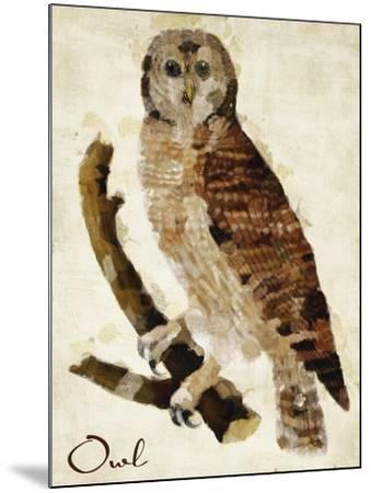 Brown Owl-Mindy Sommers-Mounted Giclee Print