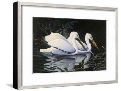 Pelicans-Michael Budden-Framed Giclee Print