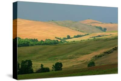 Tuscan Hill I-Robert Goldwitz-Stretched Canvas Print