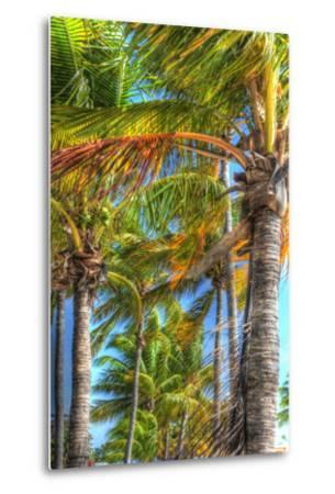 Palms Vertical-Robert Goldwitz-Metal Print