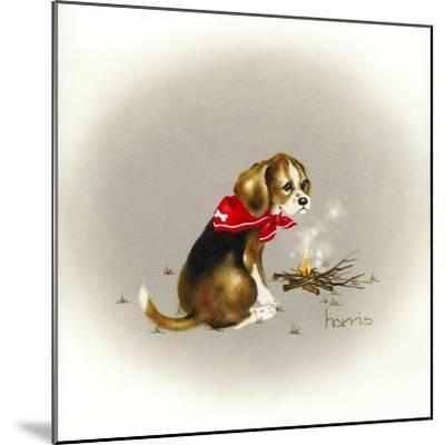 Beagle Scout-Peggy Harris-Mounted Giclee Print