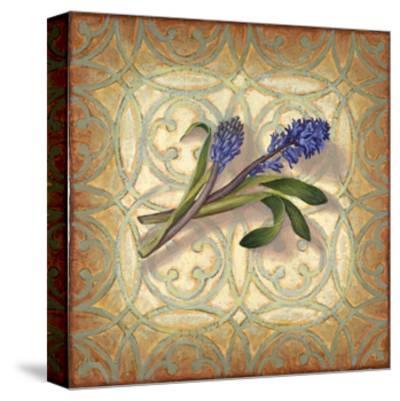 Purple Hyacinth-Rachel Paxton-Stretched Canvas Print
