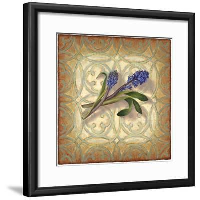 Purple Hyacinth-Rachel Paxton-Framed Giclee Print