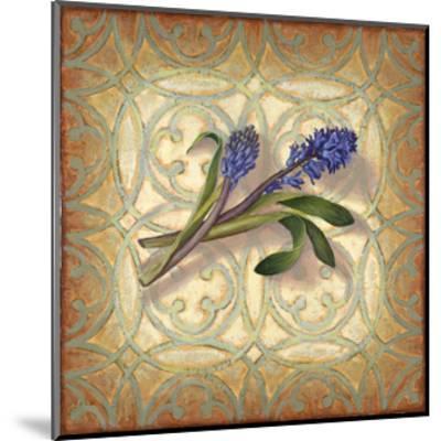 Purple Hyacinth-Rachel Paxton-Mounted Giclee Print